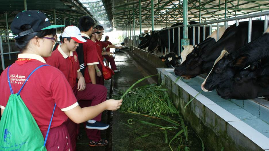 """""""Một ngày làm nông dân"""" - trải nghiệm hè thú vị của học sinh AHS"""